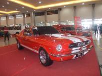 Mustang... :cool: