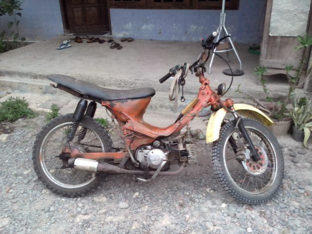 motor grasstrack (1)