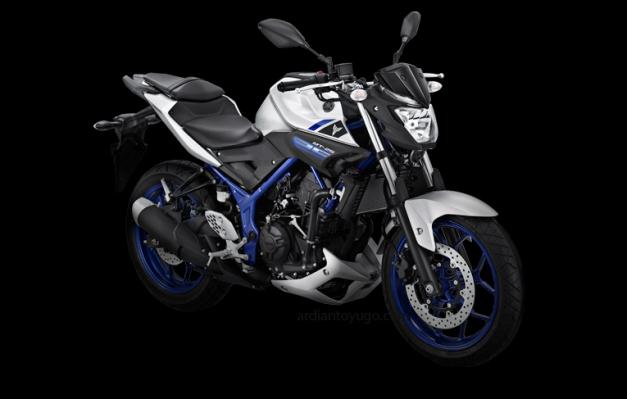 Yamaha MT-25 (1)