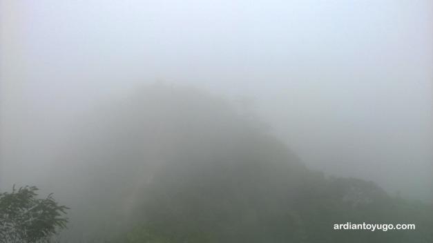 Kabutnya tebal banget...
